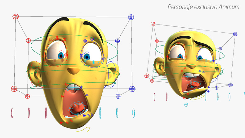 rig-facial