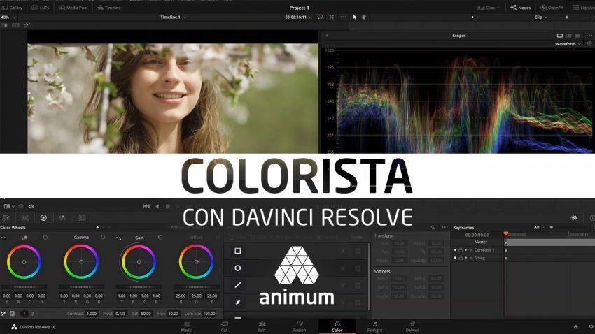 Colorista digital